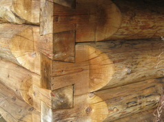 Dove tail scribed log building, Seldovia, Alaska